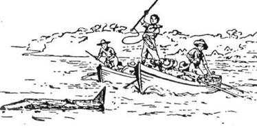 Полювання на кита