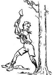 Том зрубує дерево