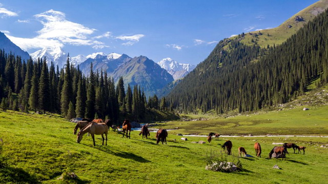 Казахстан, Западный Тянь-Шань