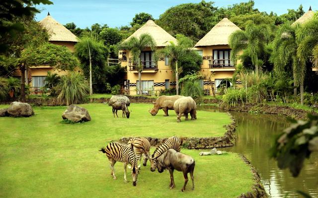 Сафари-парк и морской парк Бали