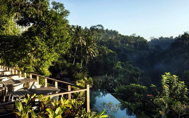джунгли Убуда