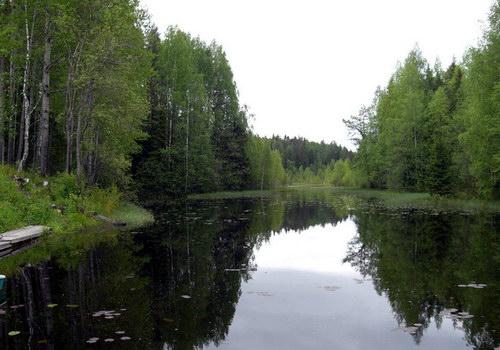 Уголок Кенозерского национального парка - идеальное место отдыха для экотуриста