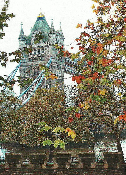 Таузрский мост - самый знаменитый мост в мире