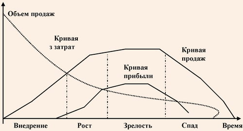 стадии жизненного цикла турпродукта