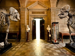 Новые технологии в музейном деле