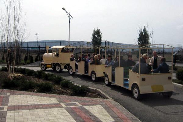 паровозик с открытыми вагончиками