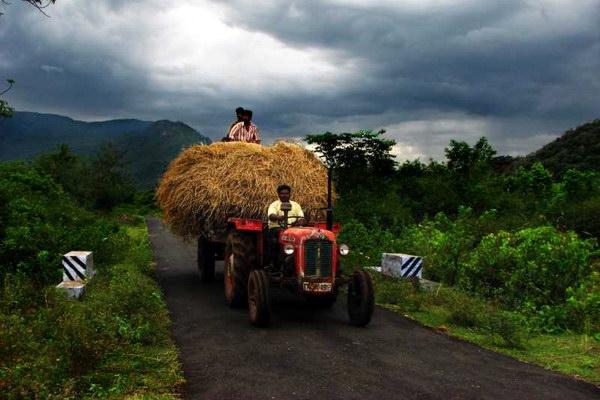 сельскохозяйственный туризм