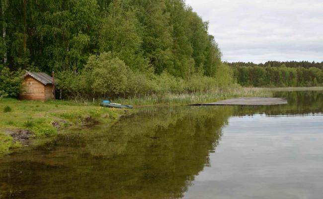 Озеро Линево в Омской области
