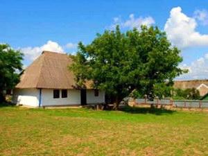 Сельский туризм в РФ