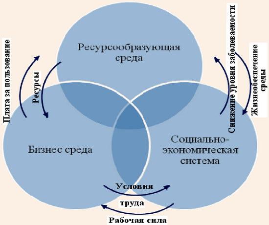 Формирование экономической эффективности в результате взаимодействия бизнес-среды, социально-экономической системы и ресурсообразующей среды