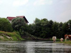 сільський туризм в Чернігівській області