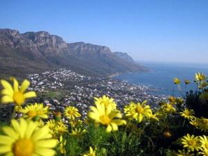 Теоретико-методологічні засади ефективної діяльності туризму в сучасній ринковій економіці