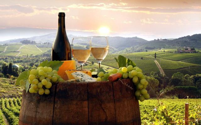 провідними районами виноградарства та виноробства у Закарпатті є Берегівський, Мукачівський, Ужгородський та Виноградівський