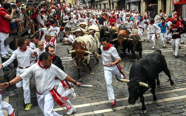 забіг биків у Памплоні