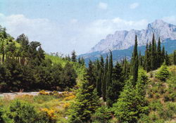 Краєвид з горою Ай-Петрі. Панорами із самої вершини не гірші