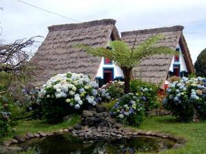 Сільський туризм як один із напрямів розвитку підприємництва на селі