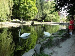 Стрийський парк у Львові