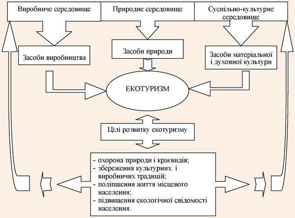 Взаємозалежність між цілями розвитку екотуризму та засобами середовища
