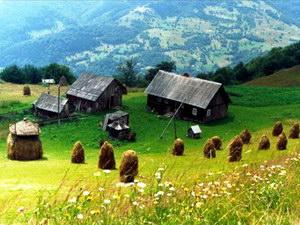 сільський відпочинок