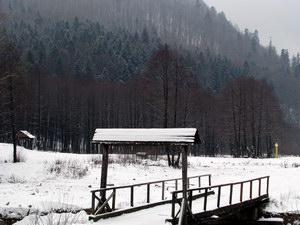 Особливості розвитку сільського туризму в Карпатсько-Подільському регіоні