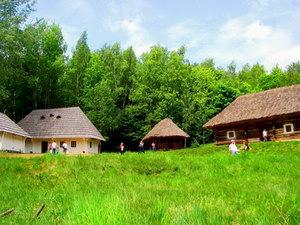 Стан і перспективи розвитку сільського туризму в Україні
