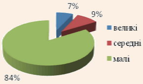 Структура анкетованих туристичних підприємств за розміром