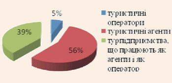 Структура анкетованих туристичних підприємств за видом діяльності