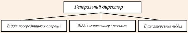 Організаційна структура турфірми