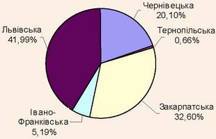 Структура кількості іноземних туристів в областях Карпатського регіону, 2008 рік