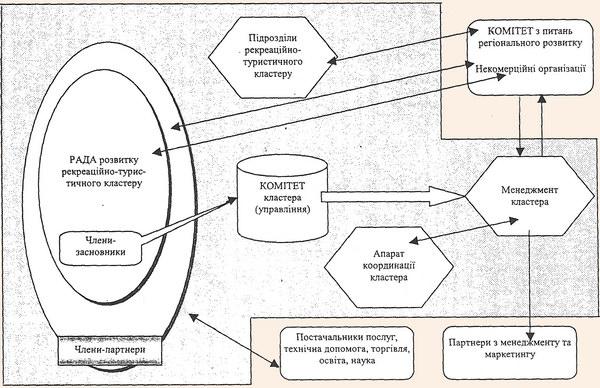 Організаційна структура рекреаційного кластеру