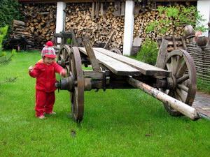 Перспективи розвитку сільського зеленого туризму в Полтавському регіоні