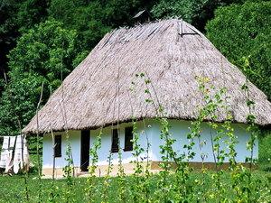 Фактори розвитку сучасного сільського зеленого туризму