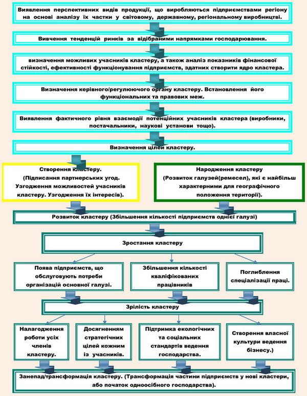 Етапи життєвого циклу штучного та еволюційного кластерів