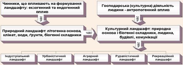 Схема розвитку і диференціації ландшафту