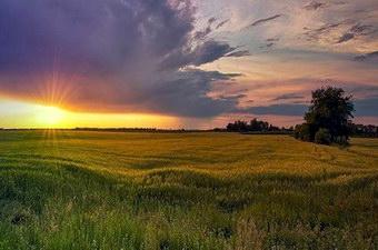 розвиток туризму в Україні на 2000 рік